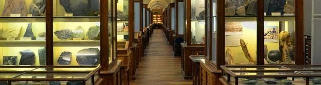 Минералогический музей (Musée de minéralogie)