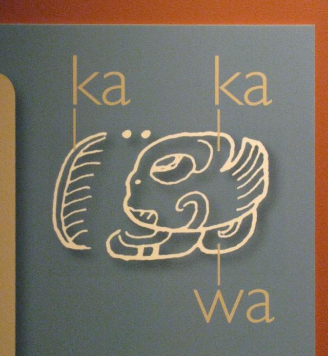 """Символы Майя, возможно так произошло слово """"какао""""."""