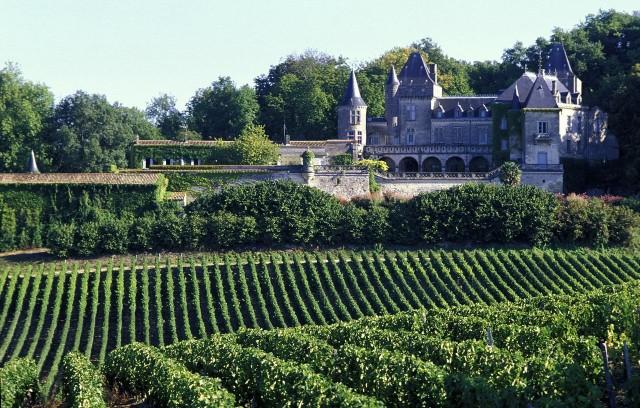Виноградники Бордо