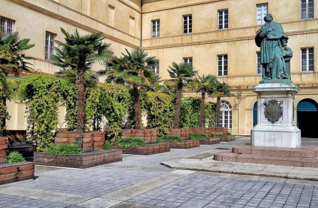 Дворец кардинала Феша