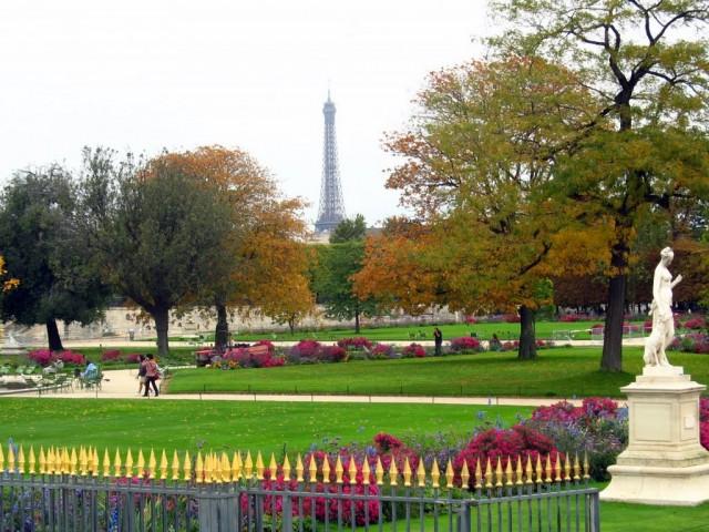 Сад Тюильри (le jardin des Tuileries)