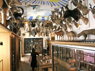 Музей охоты и природы