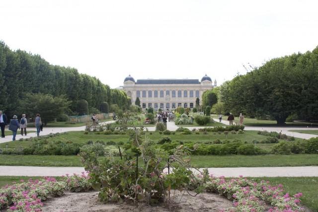 Сад растений или Ботанический сад (Jardin des plantes)
